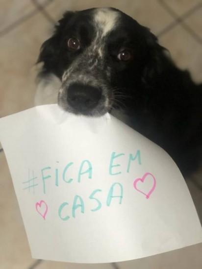 Foto: Arquivo Pessoal / Luana Iara Evaristo Vieira