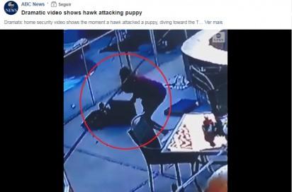 Foto: Reprodução Facebook / ABC News