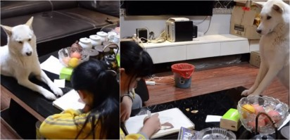 Foto: Reprodução Youtube / South China Morning Post