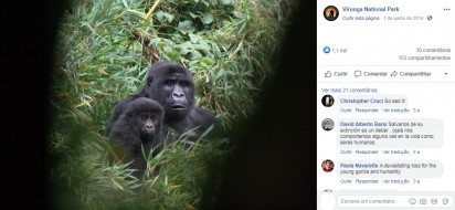 Foto: Facebook / Virunga National Park