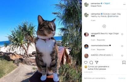 Foto: Instagram / catmantoo