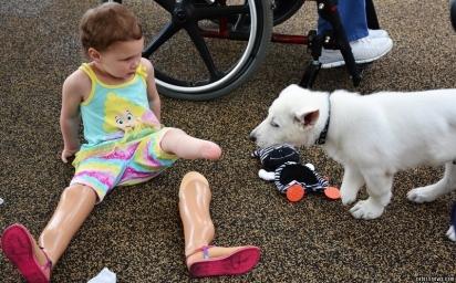 Sapphyre se apaixonou pelo cachorrinho Dan, logo que viu sua foto. (Foto: Reprodução / Catersnews.com)