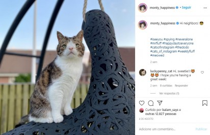 Foto: Instagram / monty_happiness