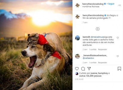 Foto: Instagram / henrythecoloradodog