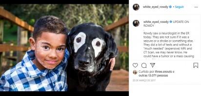 Foto: Instagram / white_eyed_rowdy