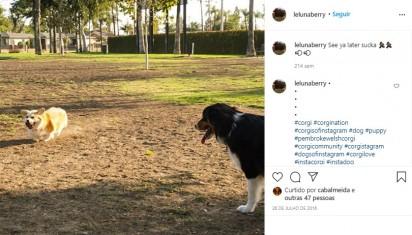 Foto: Instagram / lelunaberry