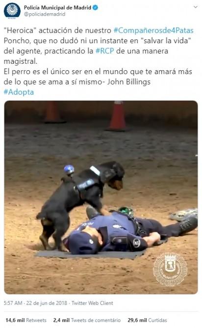 Foto: Reprodução Twitter / @policiademadrid