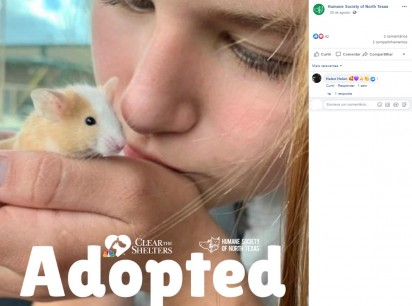 Foto: Facebook / Humane Society of North Texas