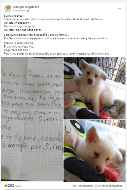 Foto: Facebook / Albergue Pergatuzoo