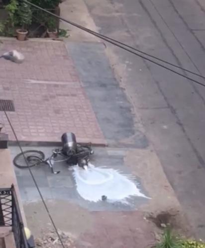 Os cães conseguem derrubar a bicicleta derramando o leite pelo chão. (Foto: Reprodução Youtube / ViralHog)