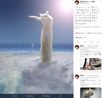 Foto: Twitter / miyabi_2222