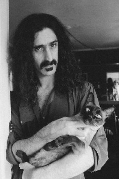 Frank Zappa / Reprodução: reviler.org