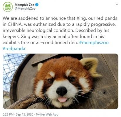 Foto: Twitter / Memphis Zoo