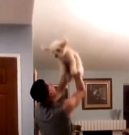 O homem atende o pedido do cachorrinho e brinca com ele. (Foto: Reprodução / The Dodo)