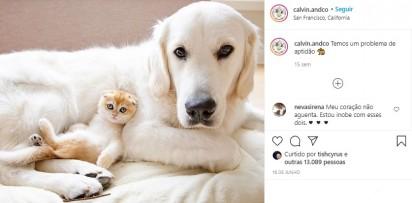 Foto: Instagram / calvin.andco
