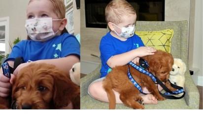 Menino ganha um filhote de cachorro, após superar câncer. (Foto: Reprodução/Fox 8)