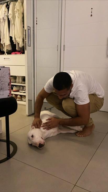 Jonas Sulzbach fazendo carinho em seu cachorro bull terrier Buddy. (Foto: Instagram/@Marigonzalez)