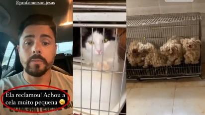Delegado Bruno Lima resgata animais em Boituva (SP). Foto: Instagram/del.brunolima