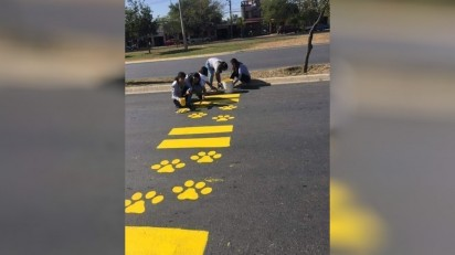 Voluntários pintam patinhas de cachorro na faixa de pedestres. (Foto: Facebook/Radiomax)