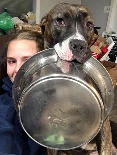 A pit bull Mya segurando a tigela na boca abraçada de sua dona. (Foto: Facebook/Mya the Hungry Wiggle Butt)