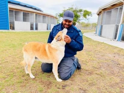 Mesmo estando longe de François, Dragão está sendo bem cuidado pelos voluntários do abrigo SPCA. (Foto: Facebook/Cape of Good Hope SPCA)