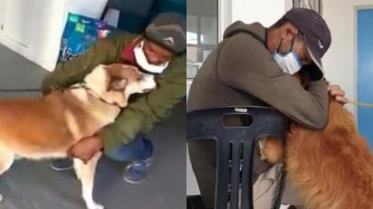Moradores de rua são obrigados a se afastarem dos seus animais de estimação por abrigo não permitir entrada de animais no local. (Foto: Reprodução Facebook/Cape of Good Hope SPCA)