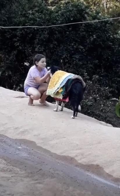 Menina faz carinho na cachorrinha de recompensa pela ajuda. (Foto: Reprodução Facebook/Catioro Reflexivo)