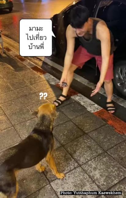O cachorrinho vivia pelas redondezas pedindo comida nos restaurantes. (Foto: Facebook/Yuttaphum Kaewekhem)