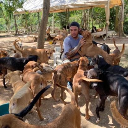Pela super lotação, os animais serão encaminhados para adoção e também para outras ONGs. (Foto: Facebook/Ricardo Pimentel Cordero)