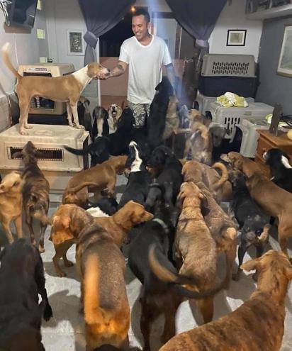 Ricardo Pimentel tem recebido doações para poder alimentar os animais abrigados. (Foto: Facebook/Ricardo Pimentel Cordero)