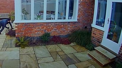Gato percebe a presença de um estranho rondando a casa. (Foto: Reprodução Facebook/Nottinghamshire Police)