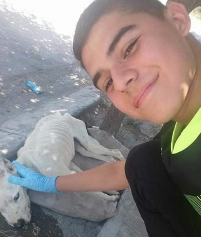O jovem Israel Iñaki imediatamente resgatou a pit bull. (Foto: Twitter/ @Isravilla18)