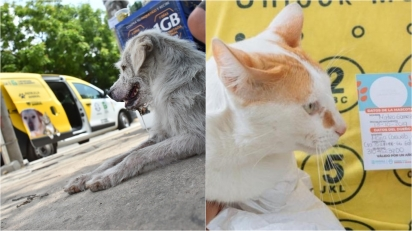 Cidade da Colômbia assumirá despesas de animais de estimação de famílias pobres. (Foto: Jairo Cassian)