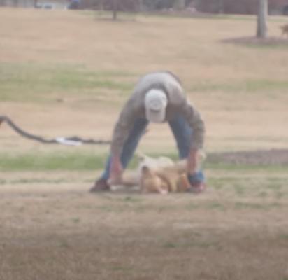 O dono tenta de tudo para fazer seu cachorro se levantar para ir embora do parque. (Foto: Reprodução Youtube/Wipandco)