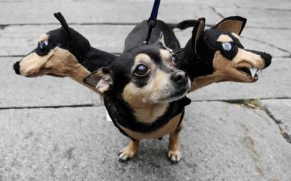 Cão Guardião Cerberus. (Foto: Reprodução/freewallimages.com)