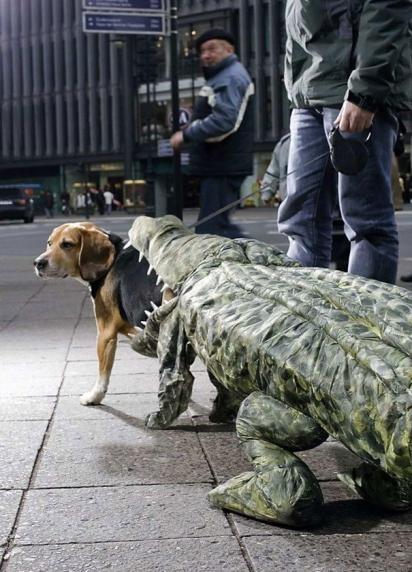 Cão crocodilo. (Foto: Reprodução/imgur.com)