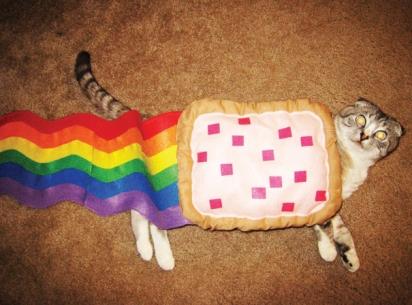 Gato Nyan. (Foto: Reprodução/capricciaart.wordpress.com)