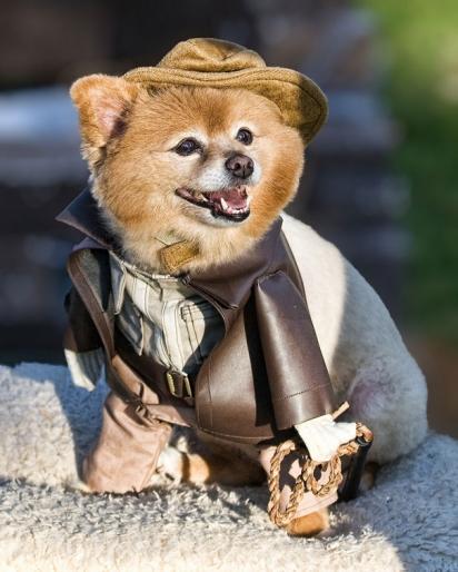 Indiana Jones. (Foto: Reprodução/Decano de Fotografia)