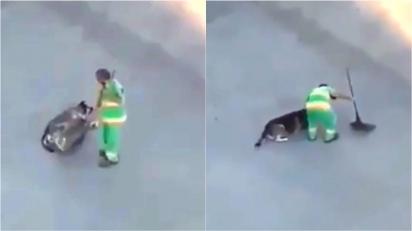 Gari faz carinho em cachorro com vassoura durante o seu intervalo. (Foto: Reprodução Twitter/@DiegoMaldonadoR)