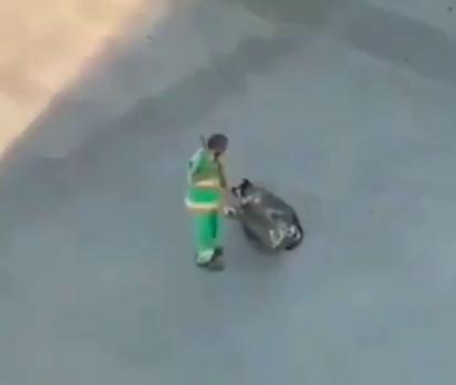 Gari passa delicadamente a vassoura no cachorro para acariciá-lo. (Foto: Reprodução Twitter/@DiegoMaldonadoR)
