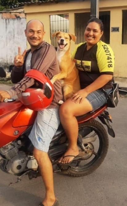 A cadelinha encontrou um lar e agora vive feliz e radiante com a sua família. (Foto: Facebook/Arnaldo Rocha Neto)