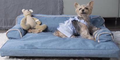 Sofá para cães. (Foto: Reprodução/Boing Boing)