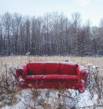 Momo está escondido em uma paisagem branca de neve com um sofá vermelho. (Foto: Andrew Knapp)