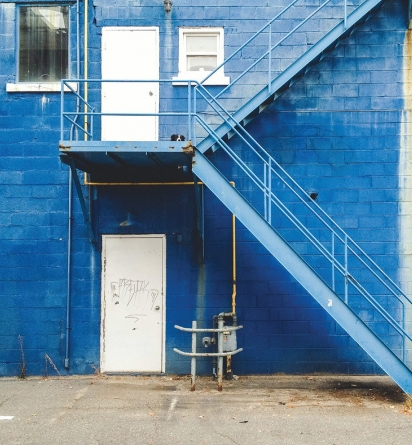 Momo escondido em um ambiente externo azul com branco. (Foto: Andrew Knapp)