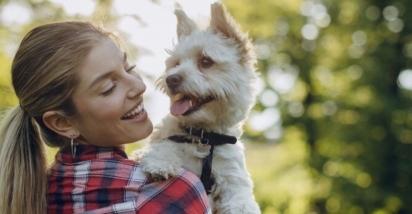 Ao suspeitar que seu cão tem um tumor, detectá-lo precocemente é fundamental para dar a ele a melhor chance de se recuperar totalmente. (Foto: Divulgação/Purina)
