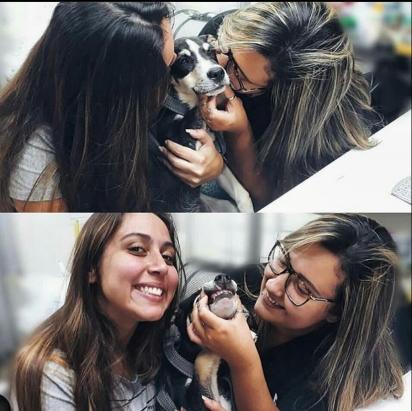Juju sendo mimada no pet shop. (Foto: ArquivoPessoal/Jade Carvalho)