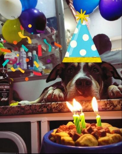 Juju já ganhou até festa de aniversário. (Foto: Arquivo Pessoal/Jade Carvalho)