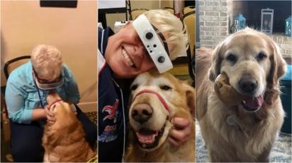 Mulher cega se emociona ao ver seu cão-guia pela 1ª vez em 8 anos graças a tecnologia revolucionária. (Foto: Facebook/Mary Sedgwick)