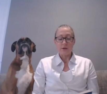 Ao perceber que dona não lhe dá atenção o cão senta ao seu lado. (Foto: Reprodução Youtube/Deanne Bourke)