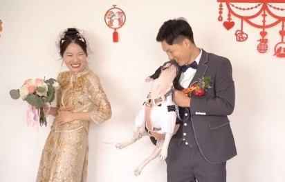 Depois de chutar a noiva o cãozinho lança um olhar apaixonado para o noivo. (Foto: Reprodução TikTok/Douyin 383336107)